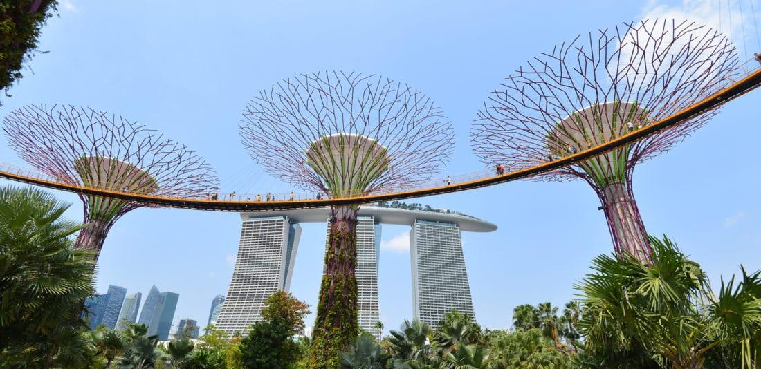 SURVIVAL ASIA TRIP: Сады Сингапура – новый взгляд на растения