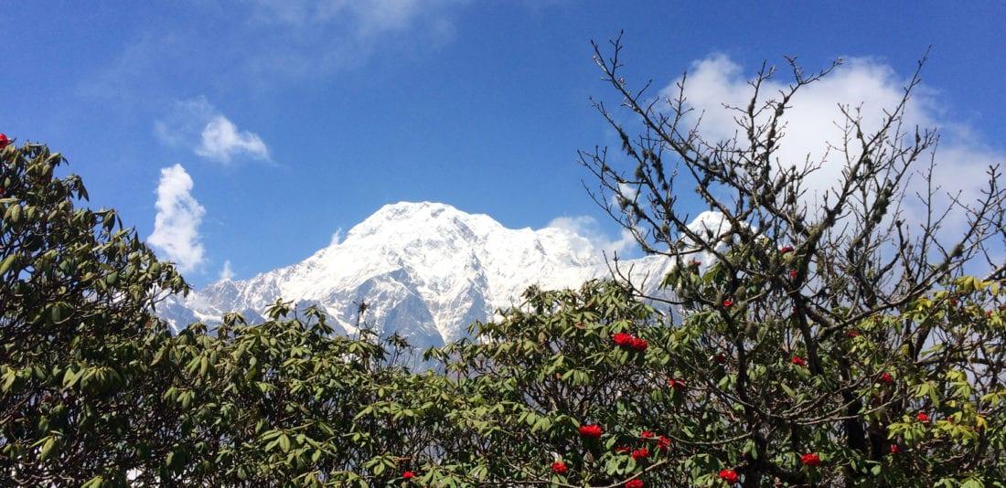 Марди Химал, день 3-4