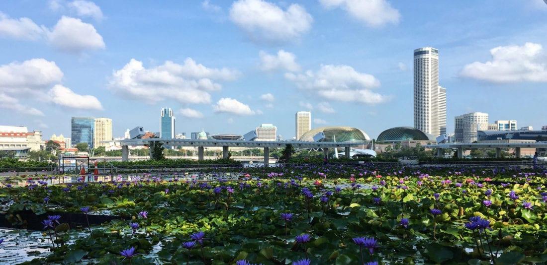 Коротко о Сингапуре