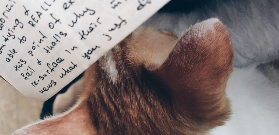 Просто пишите!